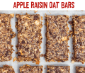 apple-raisin-bar-2